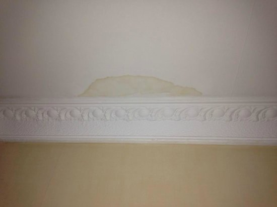 Edinburgh Regency Guest House: dampness or leaks/ marks on ceiling