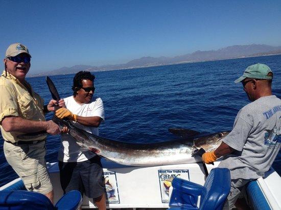 JC's Sportfishing : Jake's Marlin
