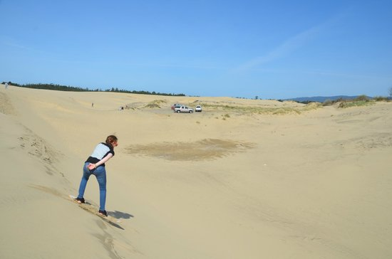 Sand Master Park: Hours of fun!