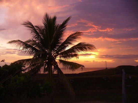 Seagreen Guesthouse: Blick von der Dachterasse