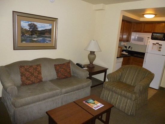 Staybridge Suites Denver International Airport : Living Room