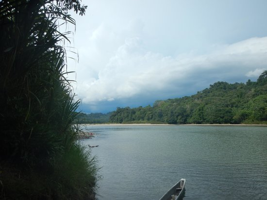 Anaconda Lodge Ecuador : Un ramo del fiume Napo