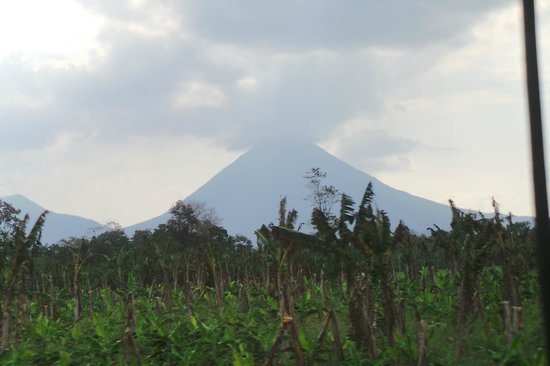 Arenal Oasis Eco Lodge & Wildlife Refuge: Arenal Volcano from grounds