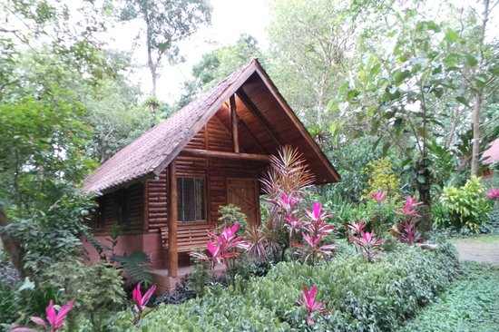 Arenal Oasis Eco Lodge & Wildlife Refuge: pretty awesome