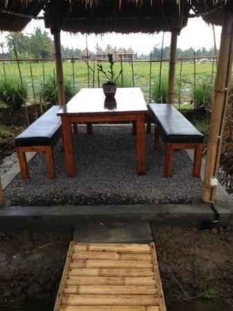 Padi Organic: table