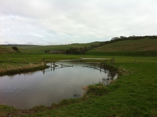 Seven Sisters Country Park: Wetlands along the Beach walk