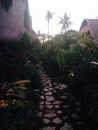 Tigerlillys Boutique Hotel: garden path