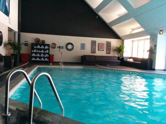 pool picture of hilton toronto toronto tripadvisor. Black Bedroom Furniture Sets. Home Design Ideas