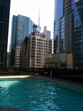 Hilton Toronto: CN Tower in view from Pool