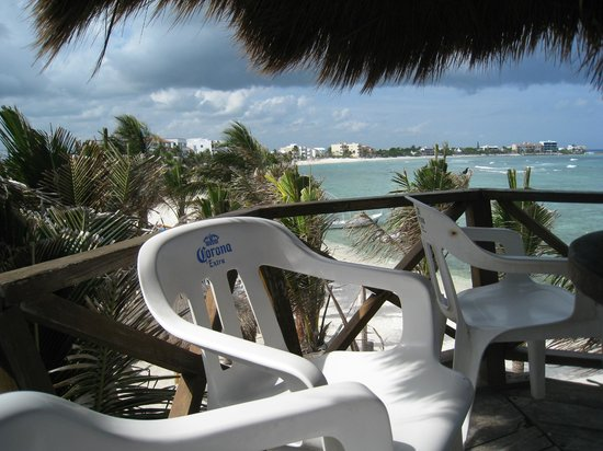 La Buena Vida: View from bird's nest
