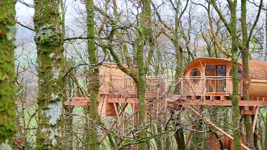 Living room treehouses machynlleth cottage reviews for 8 living room tree houses powys