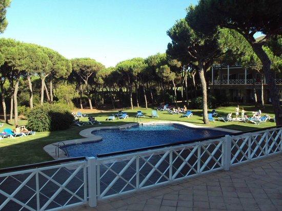 Hotel Nuevo Portil Golf: Piscina y entorno.