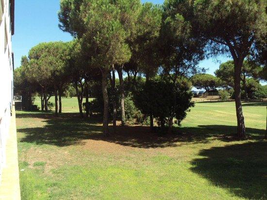 Hotel Nuevo Portil golf: Vista del campo de golf desde mi habitación.