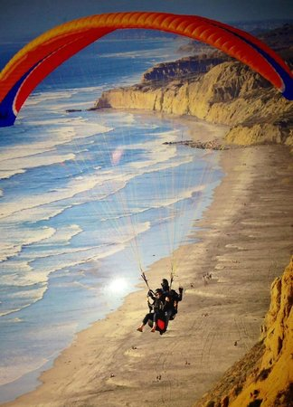 Torrey Pines Gliderport : Awesome photo over the beach