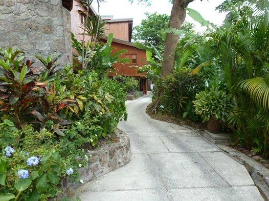 Ladera Resort: Path to rooms