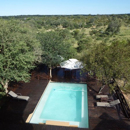 Naledi Bushcamp and Enkoveni Camp: Swimming pool area