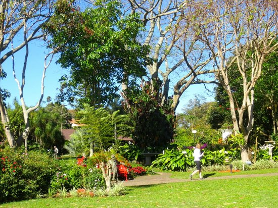 Hotel Bougainvillea: Beautiful grounds and gardens