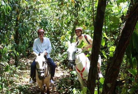 Hacienda Pozo Azul : heeeeeello
