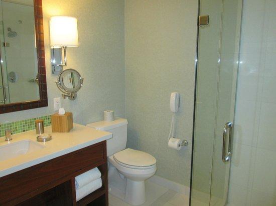 Loews Coronado Bay Resort: another pic of the bathroom