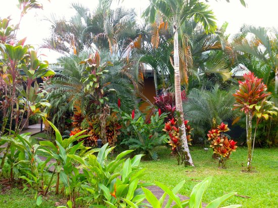 Arenal Manoa Hotel : View of the front of our bungalow