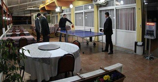 Cenka Hotel : masa tenisi