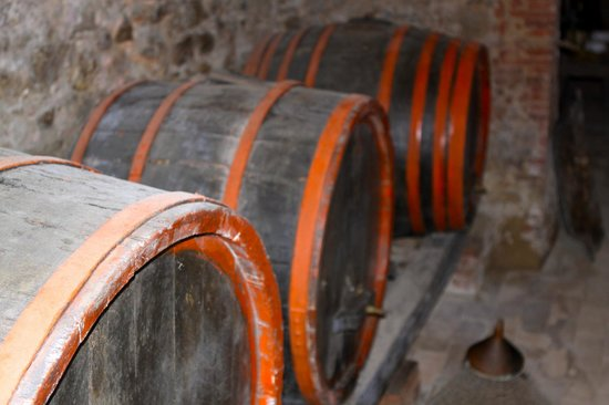 Villa Cicolina: Beautiful Tour Of The Wine Cellar Complete With Wine Tasting!