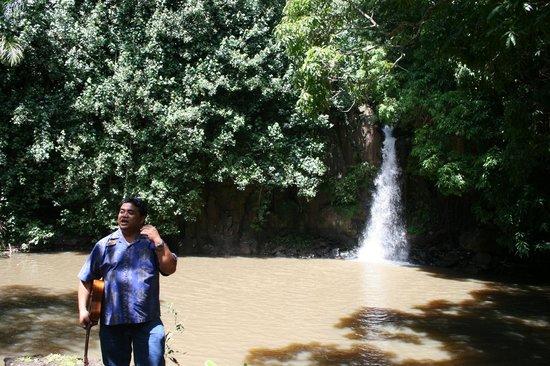 McBryde Garden: Waterfall