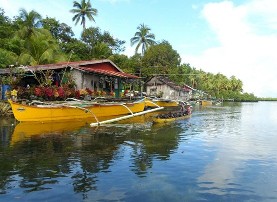 Day-Asan Floating Villages: Flowers and Woodpicker