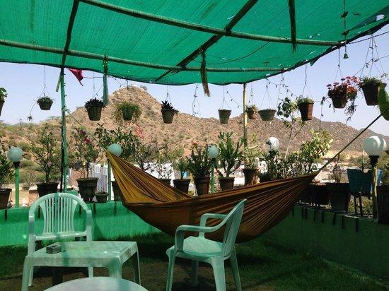 Milkman Guesthouse : Rooftop garden