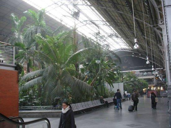 Estación de Atocha: Interior