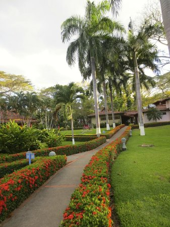 Casa Conde Beach-Front Hotel : Hotel grounds