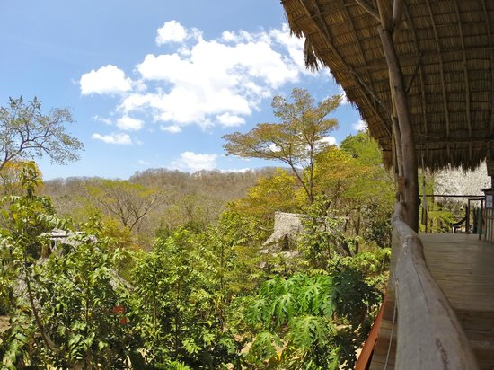 Hostel Clandestino: The view over the Jungle