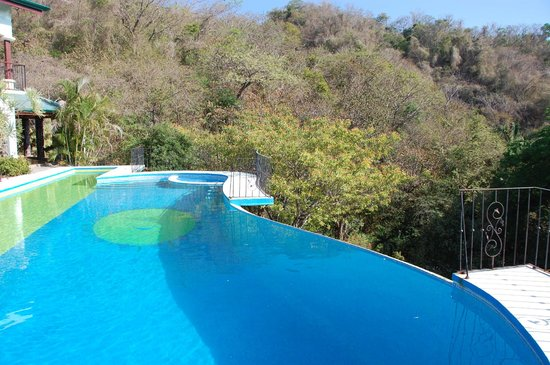 Jungles Edge: most amazing swimming pool