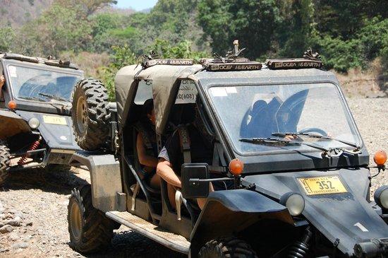 Jungles Edge : don't miss howling monkey adventure tour