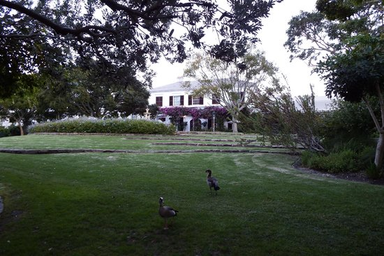 Vineyard Hotel: View from the garden