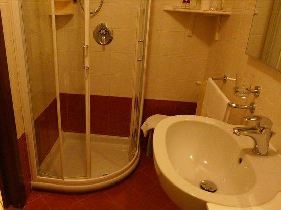 Villa Pace Park Hotel Bolognese: シャワーブース