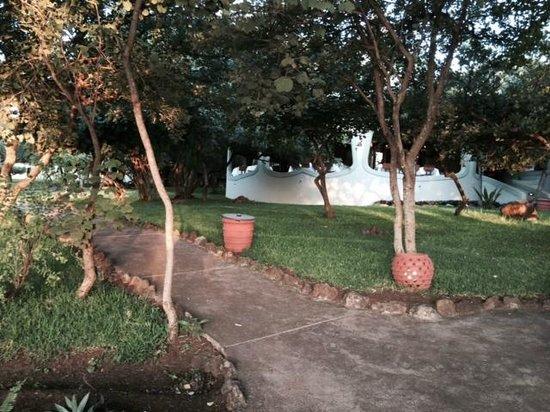 Lake Manyara Serena Lodge : Hotel & Grounds