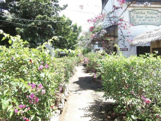 Catcha Falling Star Gardens : entering the property. Love the garden!