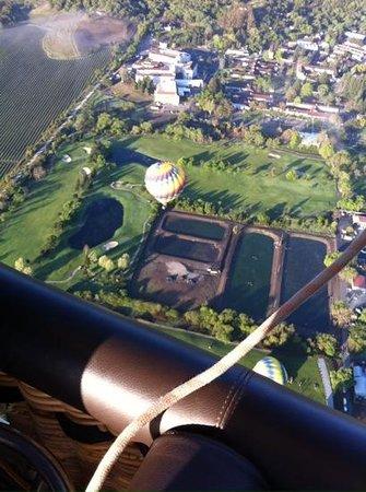 Napa Valley Aloft Balloon Rides: What a view!