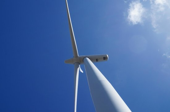Wellington Rover Tours: wind turbine