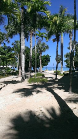 Couples Negril : Pretty beach