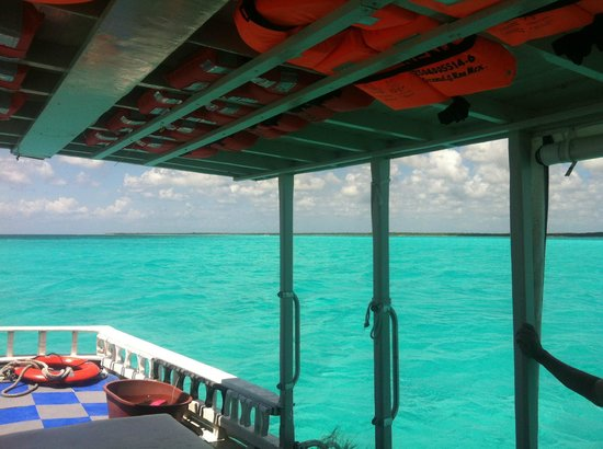 Dive with Cristina : Picture of Palancar aboard the Nena - April 2014