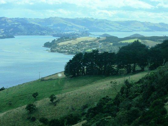 Otago Peninsula: Western view