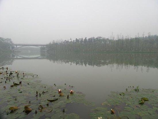 Qiandeng Lake: Fog 3