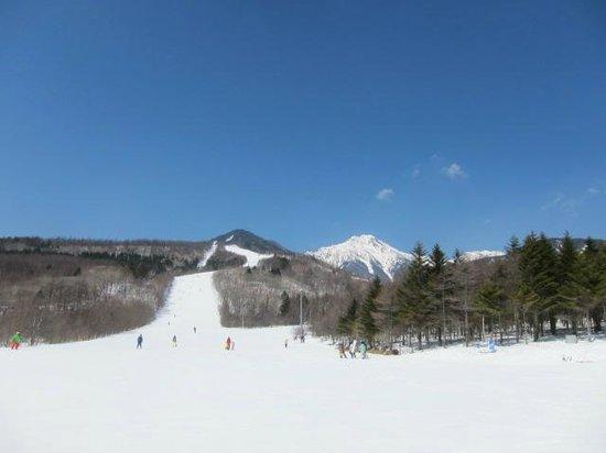 Sun Meadows Kiyosato Highland Park: スキー場
