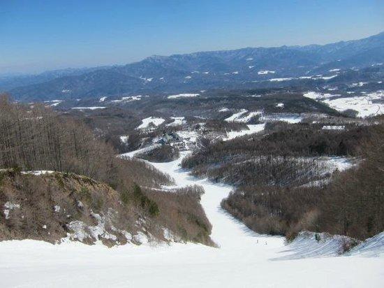 Koumi Reex Ski Valley : 景色