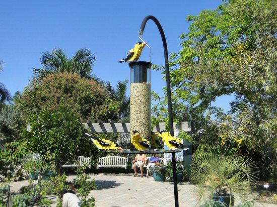 Naples Botanical Garden: Lego Birds