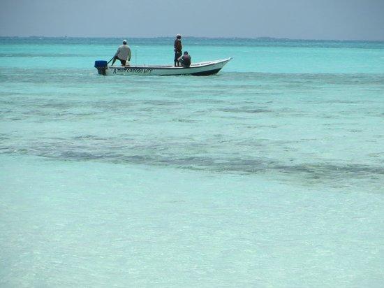 Isla de Carenero - Los Roques: O mar é fantástico