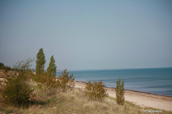 Pinery Provincial Park : Huron view