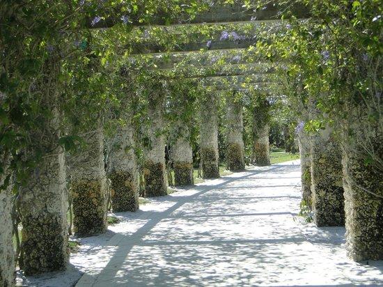 Naples Botanical Garden: trellis walk